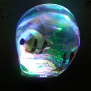Other - Fish led  night light